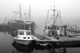 Damariscotta Boats